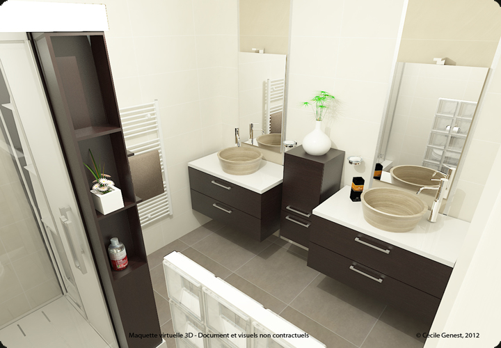 Amenagement salle de bain 3d id e for Conception salle de bain 3d mac